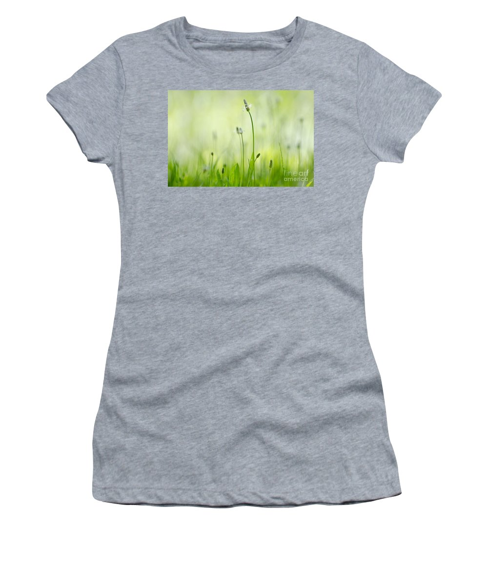 Grass Women's T-Shirt featuring the photograph Green Grass by Mats Silvan