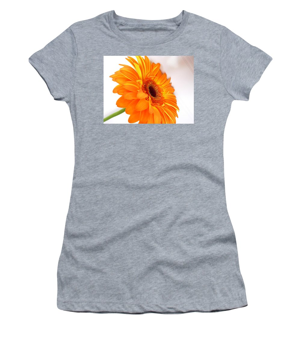 Gerbera Photographs Photographs Photographs Women's T-Shirt (Athletic Fit) featuring the photograph 3562 by Kimberlie Gerner