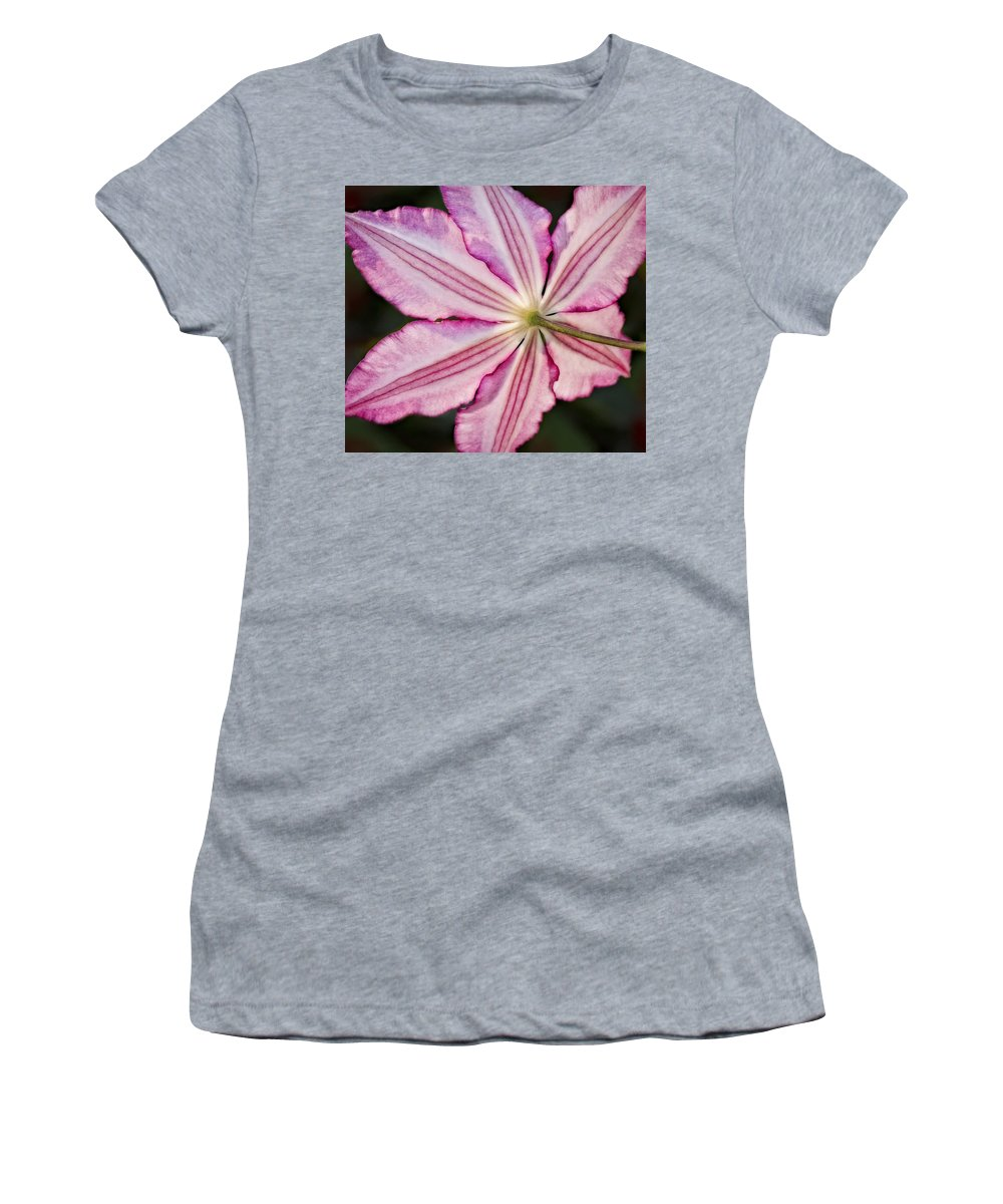 Clematis Women's T-Shirt (Athletic Fit) featuring the photograph Backlit Clematis by Susan Candelario
