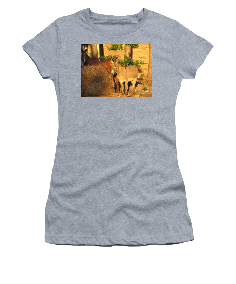 Wildlife Women's T-Shirt (Athletic Fit) featuring the photograph Brown Sugar Eating Some Hay by Michelle Powell