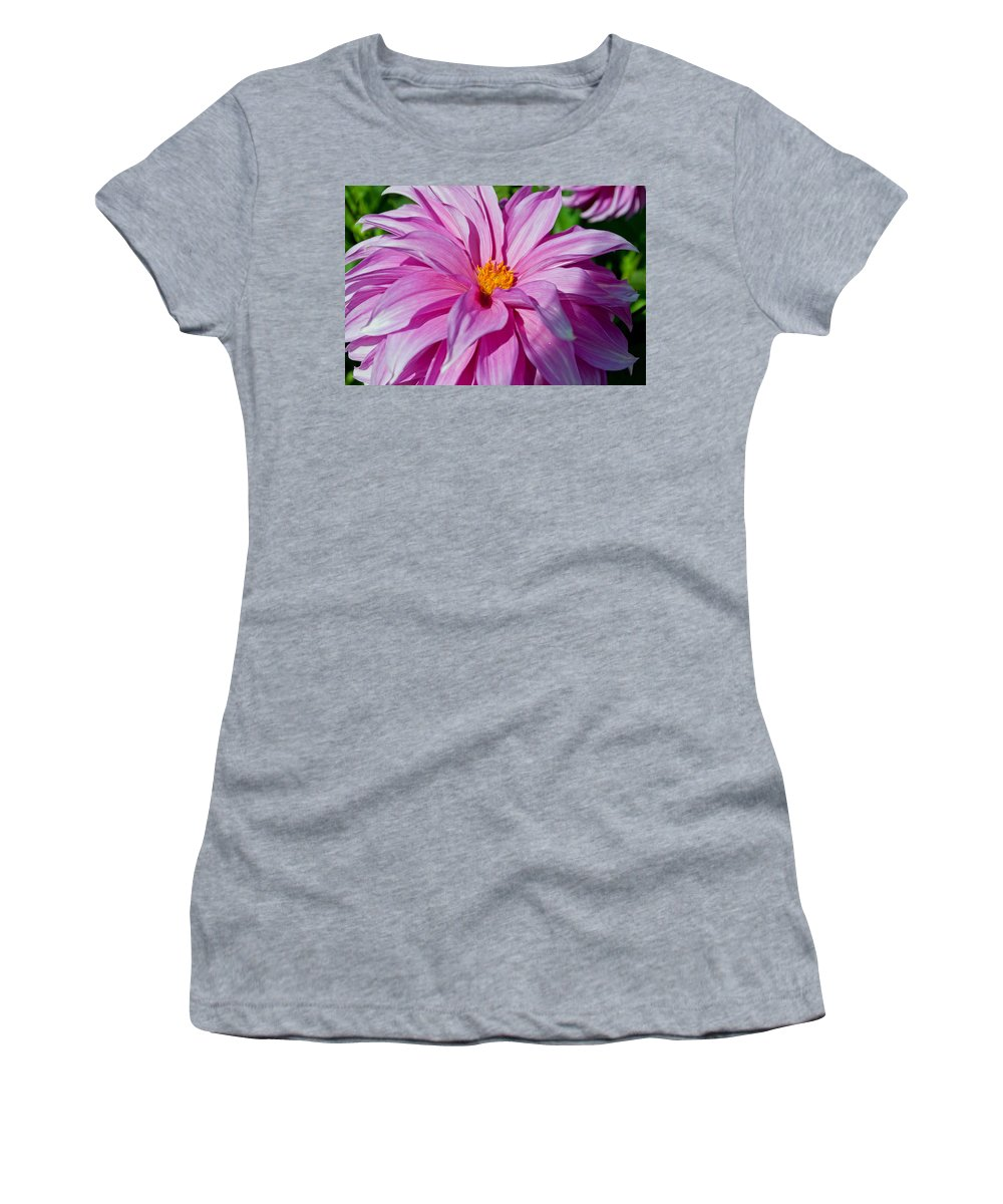 Ice Pink Women's T-Shirt (Athletic Fit) featuring the photograph Ice Pink Dahlia by Tikvah's Hope