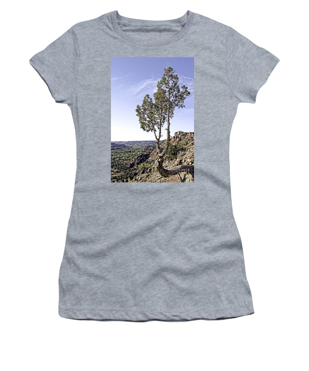 Art Women's T-Shirt (Athletic Fit) featuring the photograph Living On The Edge by Charles Dobbs