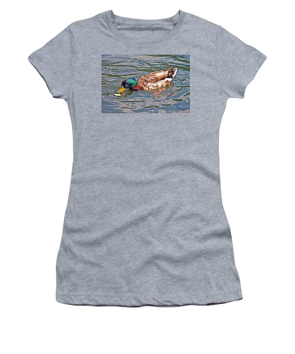 Women's T-Shirt featuring the photograph Mallard With Cracker by Susan Leggett