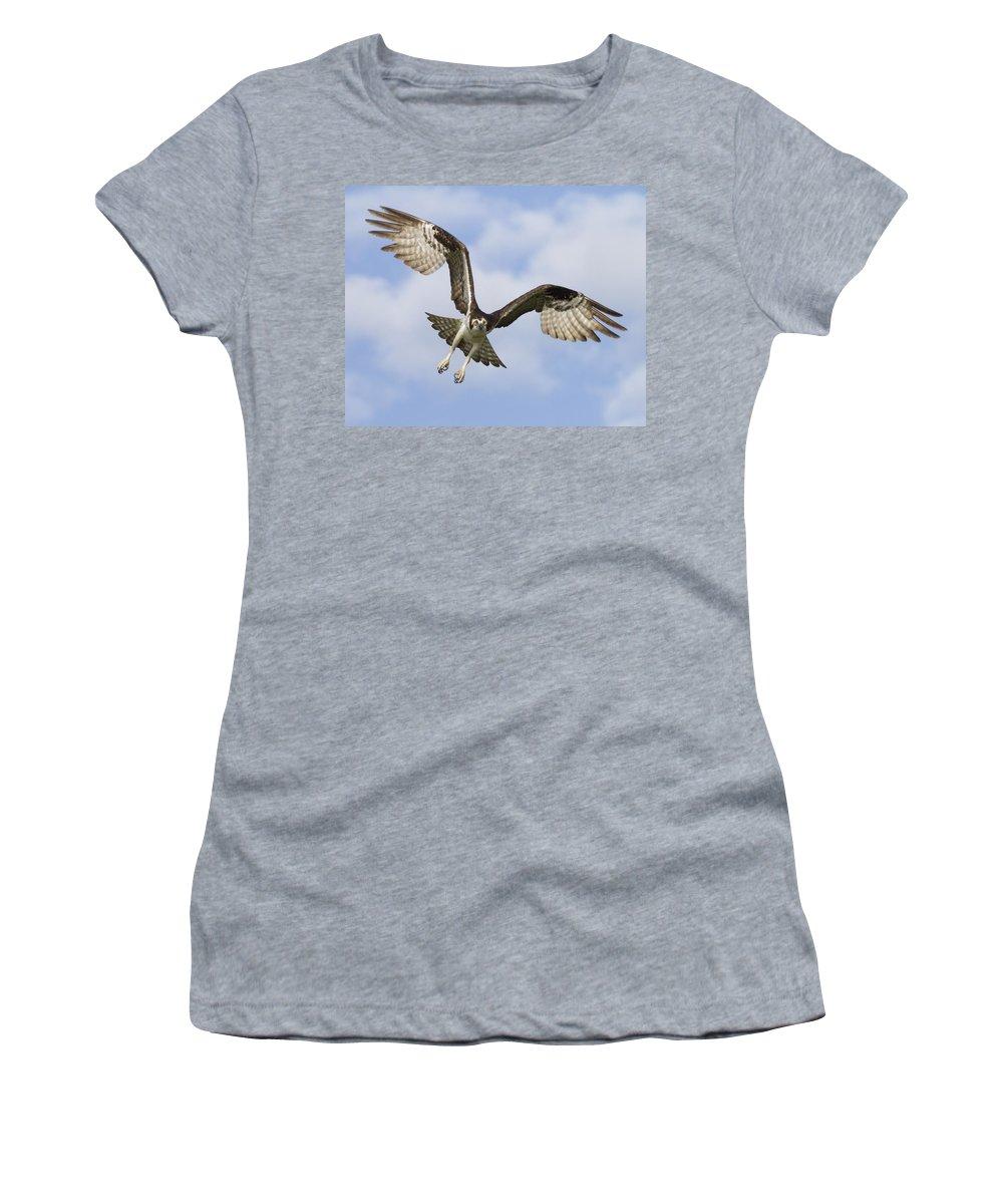 Florida Women's T-Shirt featuring the photograph Osprey In Flight One by Bill Swindaman