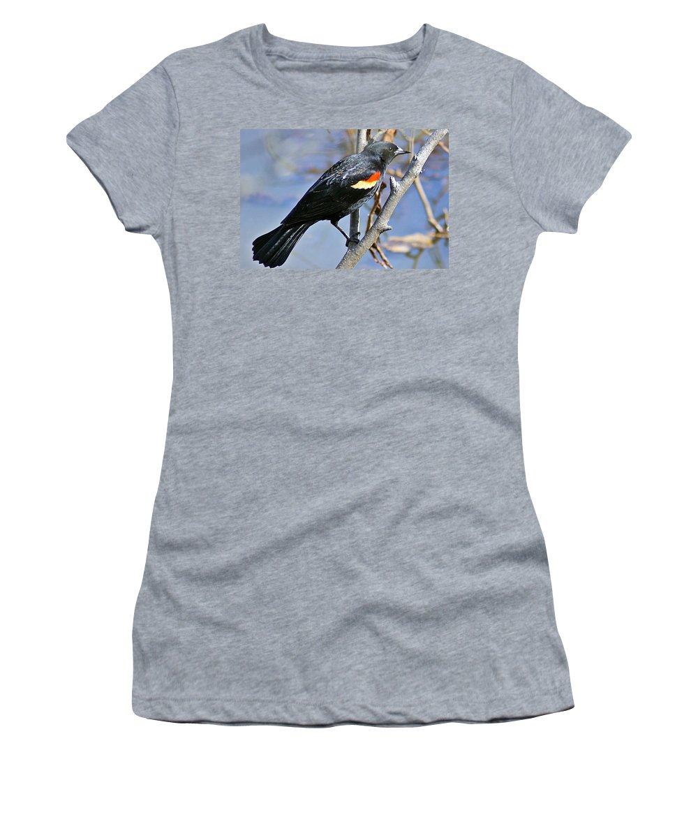 Redwinged Women's T-Shirt featuring the photograph Redwinged Blackbird I by Joe Faherty