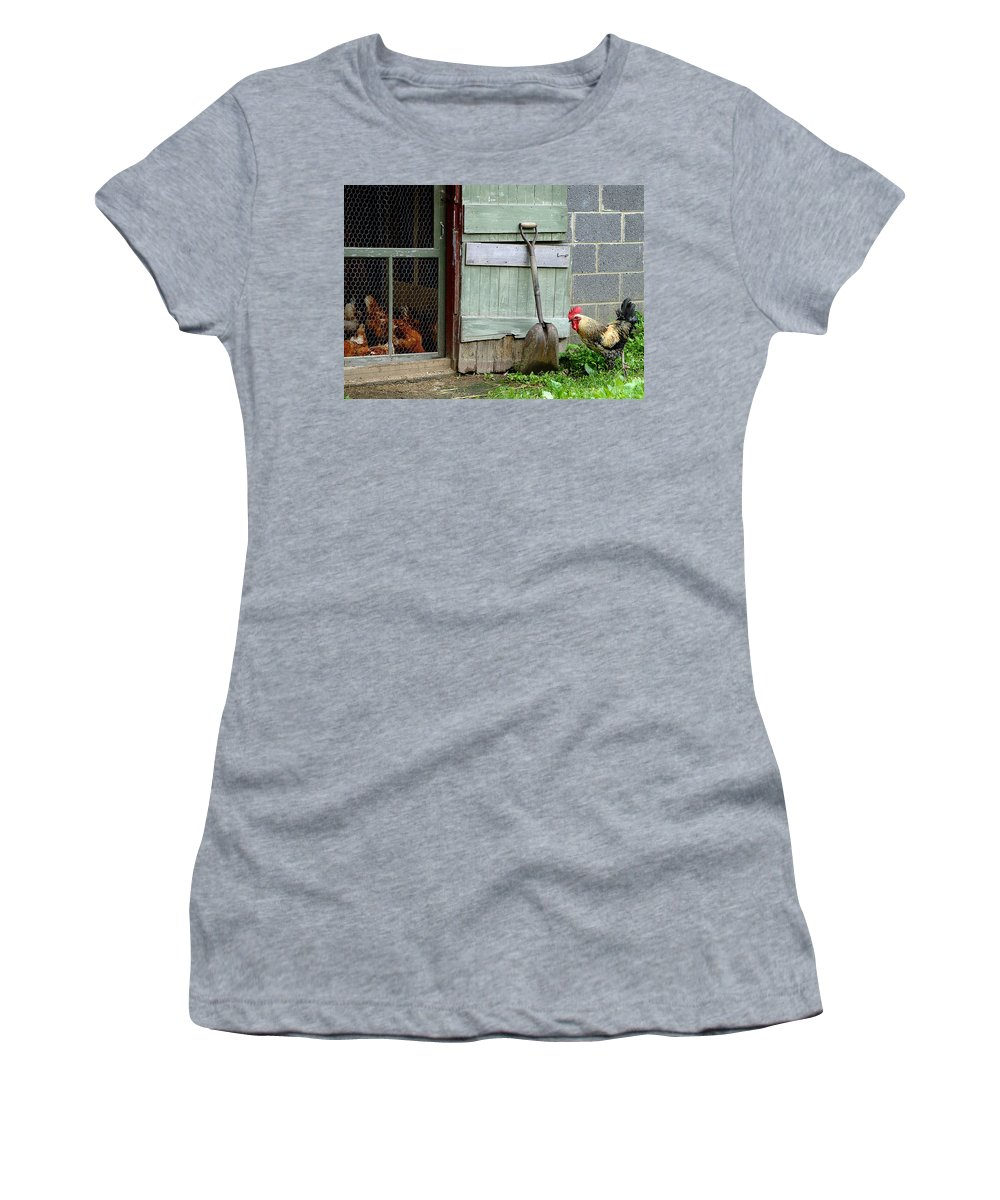 Rooster And Hens Women's T-Shirt featuring the photograph Rooster And Hens by Lisa Phillips