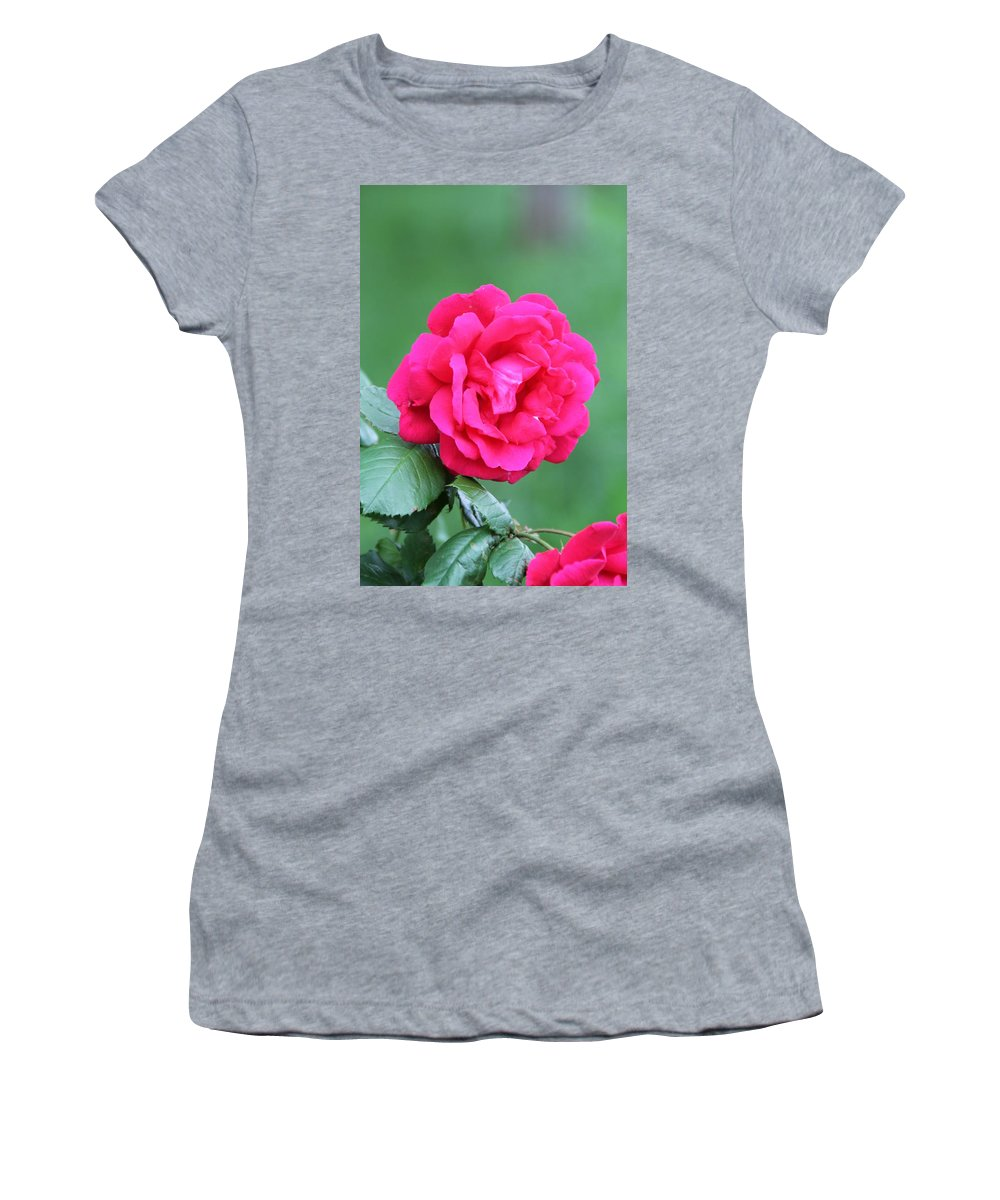 Rose Flower Women's T-Shirt (Athletic Fit) featuring the photograph Rose by Edward Gallegos