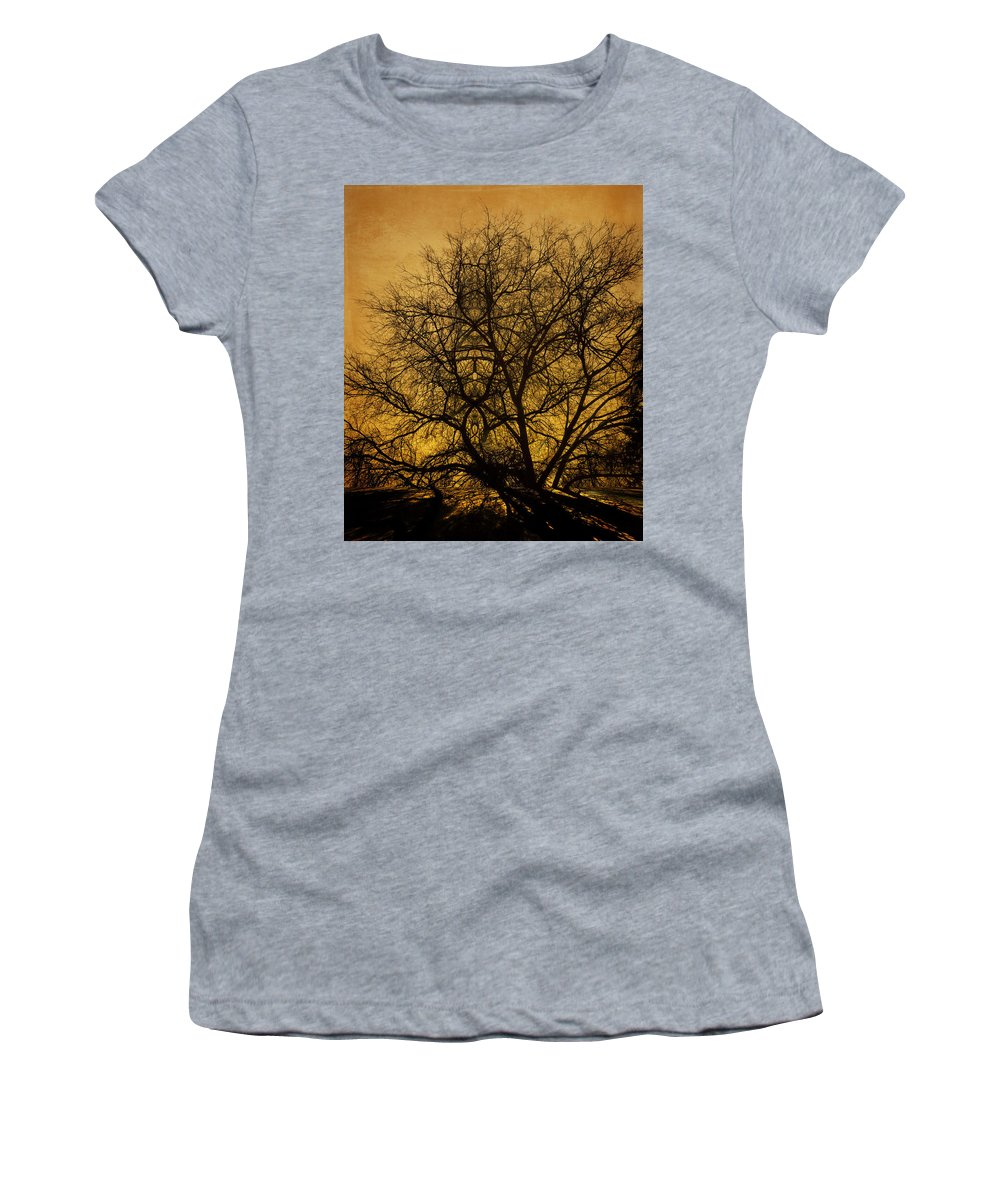 Shadows Women's T-Shirt (Athletic Fit) featuring the photograph Shadows by Jay Hooker