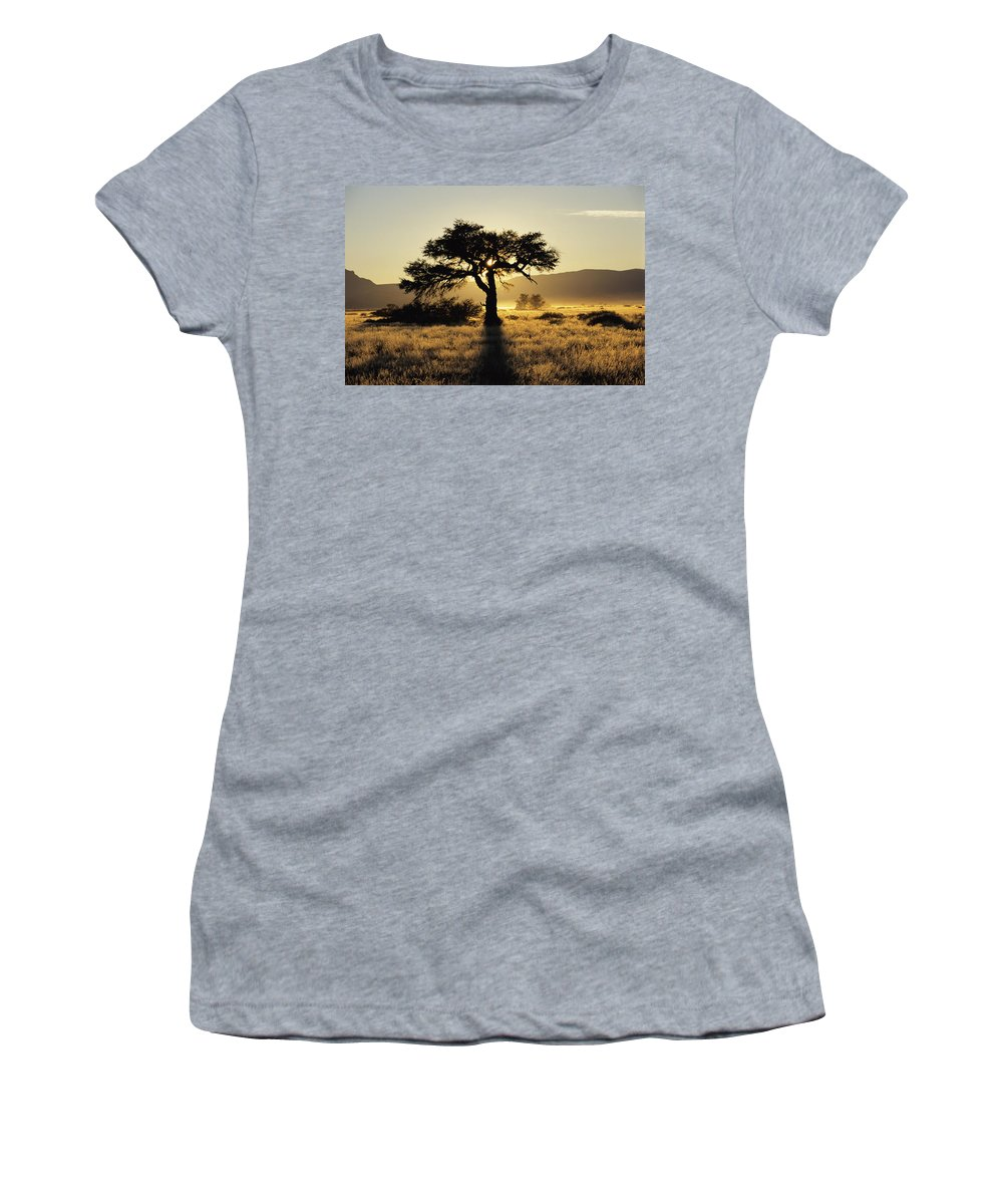 Vegetation Women's T-Shirt (Athletic Fit) featuring the photograph Sun Coming Up Behind A Tree In African by Axiom Photographic