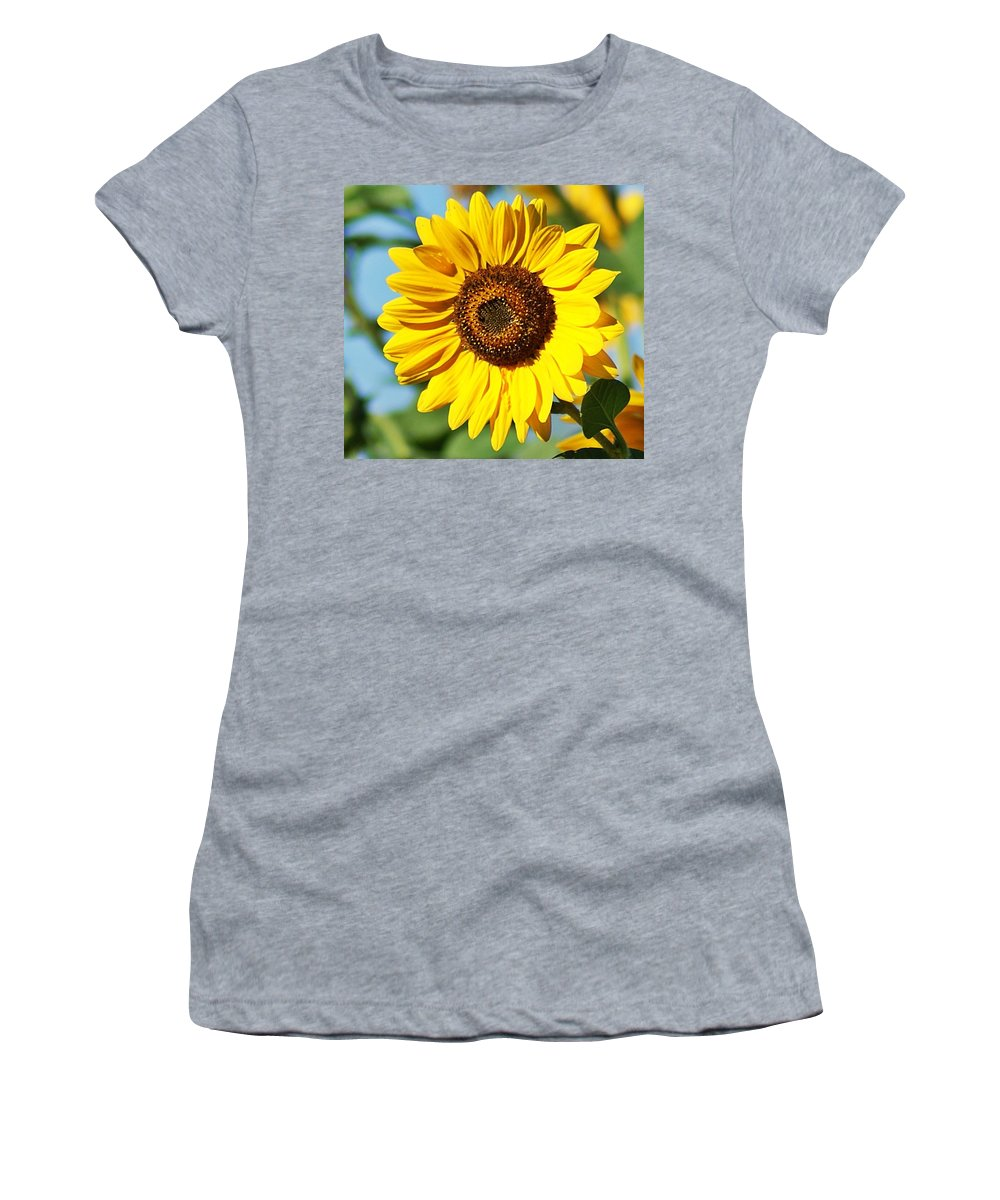 Sunflower Women's T-Shirt featuring the photograph Sunflower Small File by Joe Faherty
