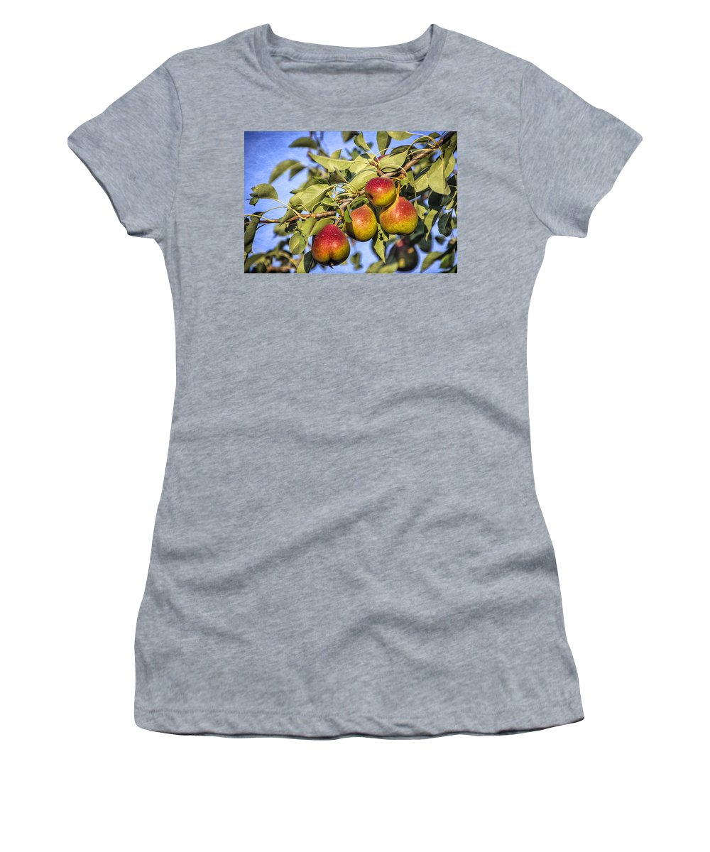 Tree Women's T-Shirt featuring the photograph Tempting by Joan Carroll