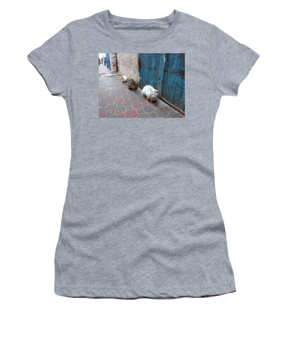 Travel Women's T-Shirt featuring the photograph Three Cats In Essaouira by Miki De Goodaboom