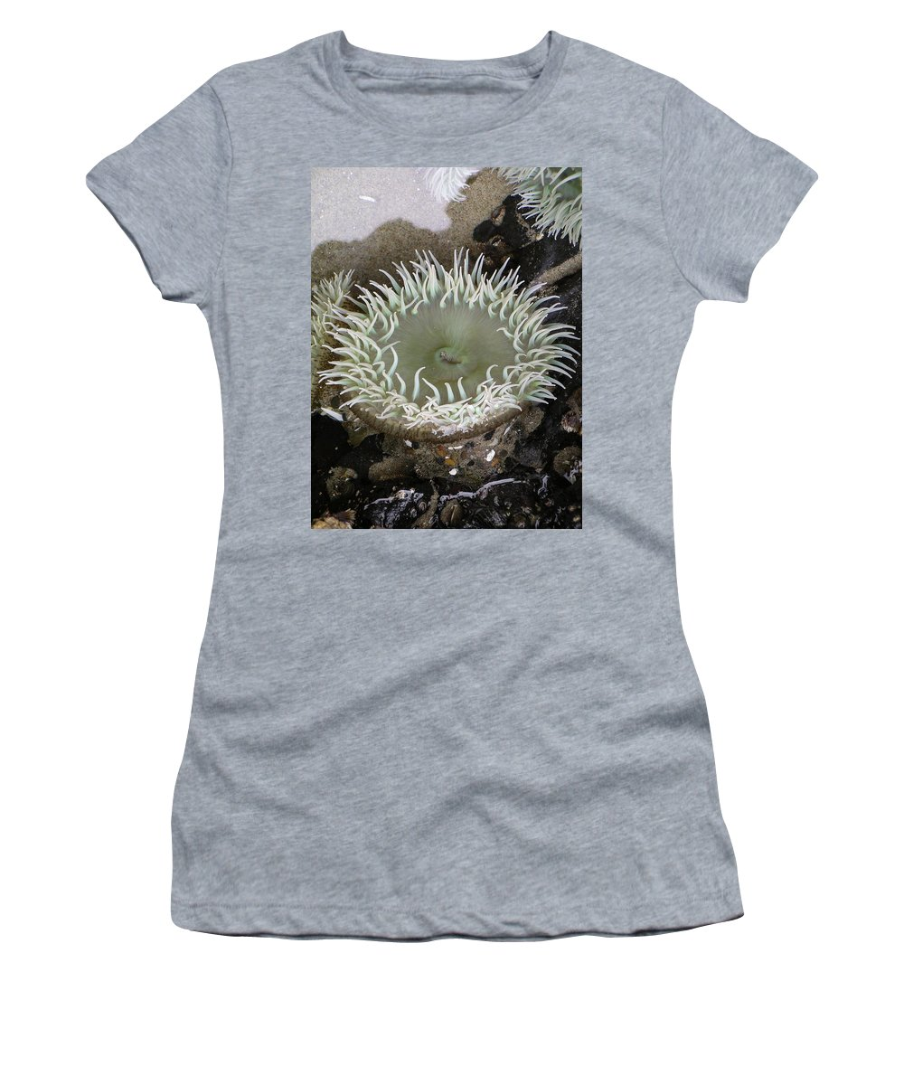 Anemone Women's T-Shirt featuring the photograph Anemone by Rich Bodane