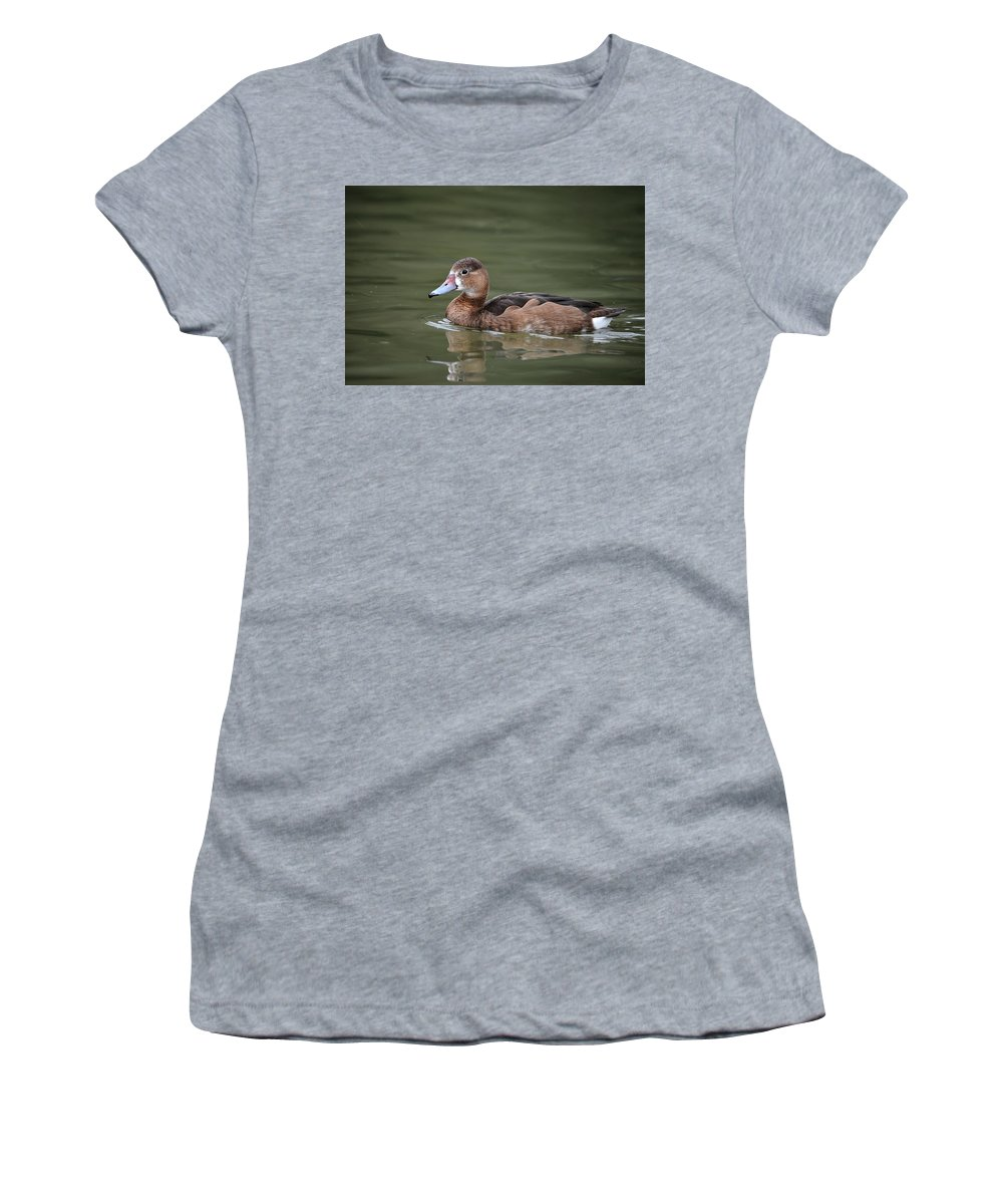 Bird Women's T-Shirt featuring the photograph Beautiful Portrait Of Rosy-billed Pochard Duck Bird Netta Peposa by Matthew Gibson