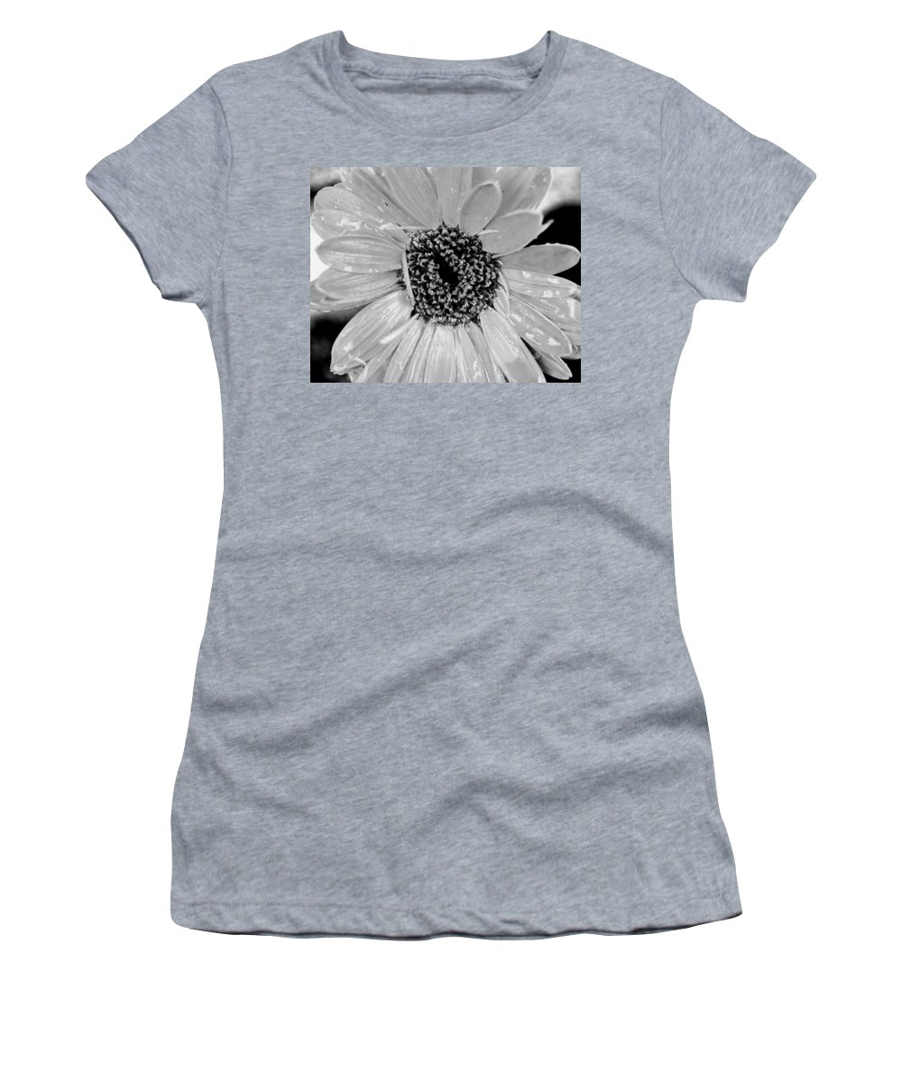 Gerber Daisy Women's T-Shirt (Athletic Fit) featuring the photograph Black And White Gerbera Daisy by Amy Fose