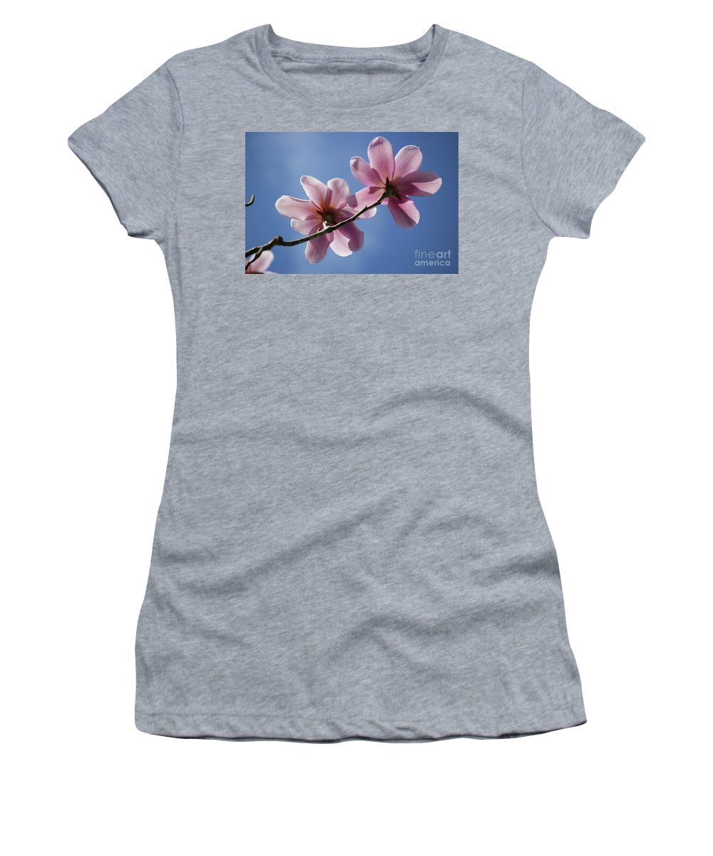 Magnolia Flowers Women's T-Shirt (Athletic Fit) featuring the photograph Magnolia Flowers by Julia Gavin