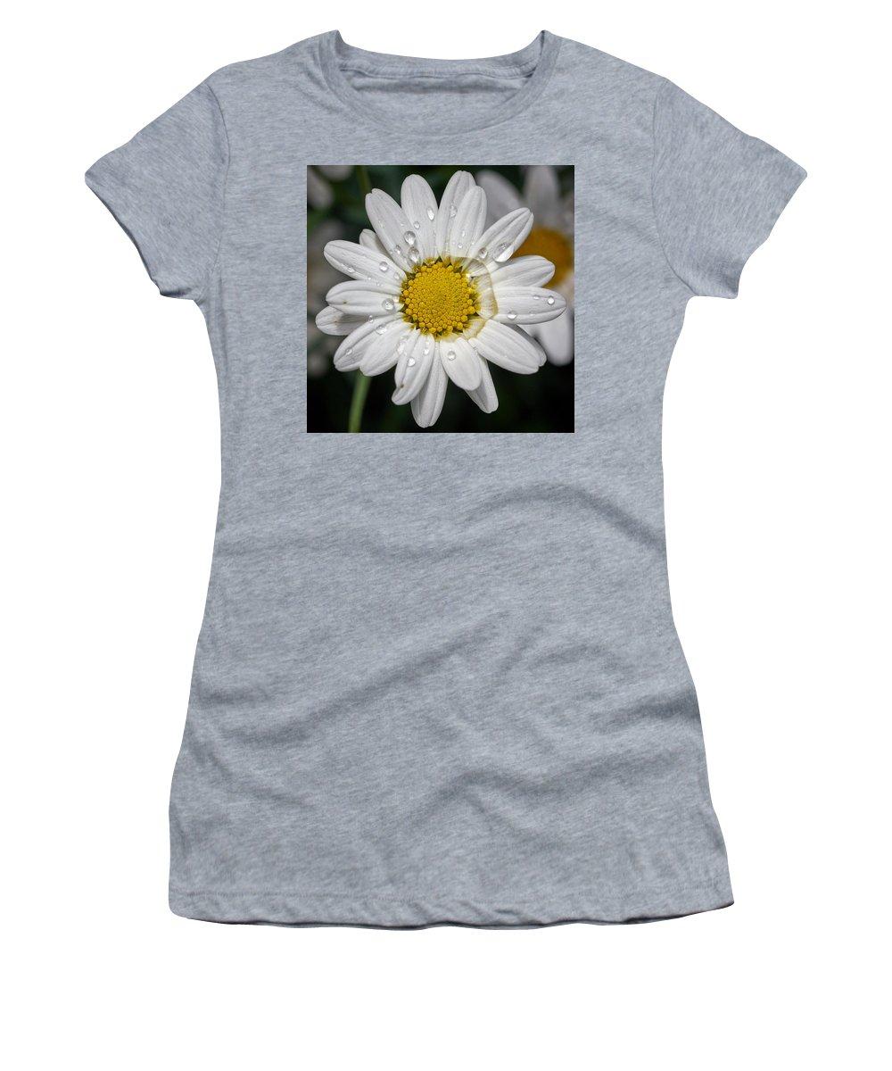 Finland Women's T-Shirt featuring the photograph Marguerite Daisy by Jouko Lehto