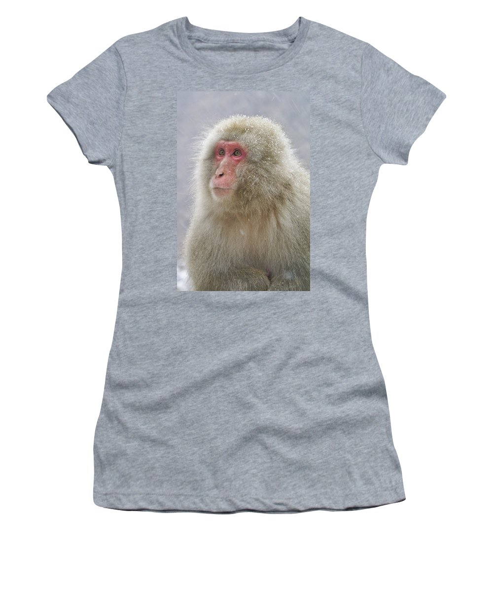 Japan Women's T-Shirt (Athletic Fit) featuring the photograph Snow-dusted Monkey by Michele Burgess