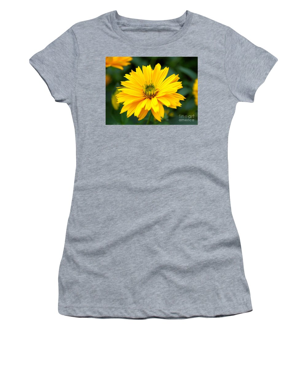 Macro Women's T-Shirt featuring the photograph Sun Flower by Joe Ng