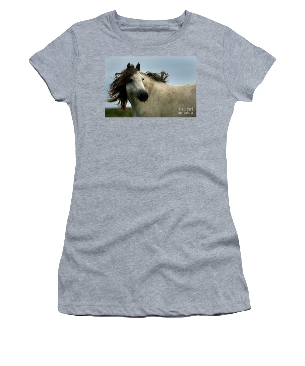 Horse Women's T-Shirt featuring the photograph Wind In The Mane by Angel Ciesniarska