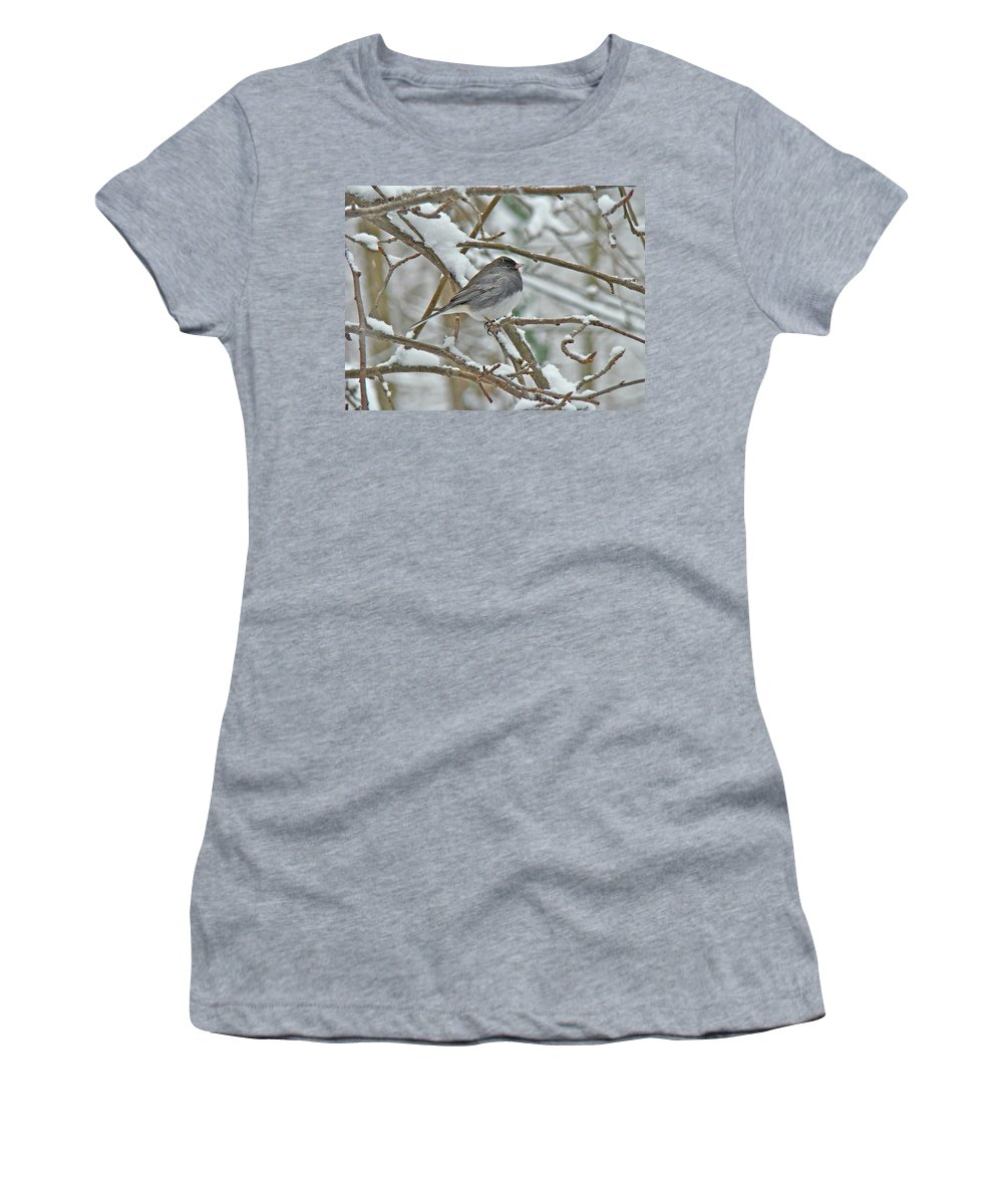 Junco Women's T-Shirt (Athletic Fit) featuring the photograph Dark-eyed Junco - Snowbird by Mother Nature