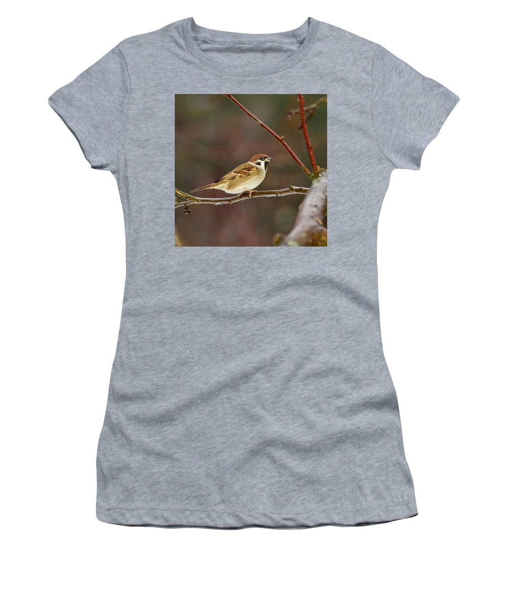 Lehtokukka Women's T-Shirt (Athletic Fit) featuring the photograph Eurasian Tree Sparrow by Jouko Lehto