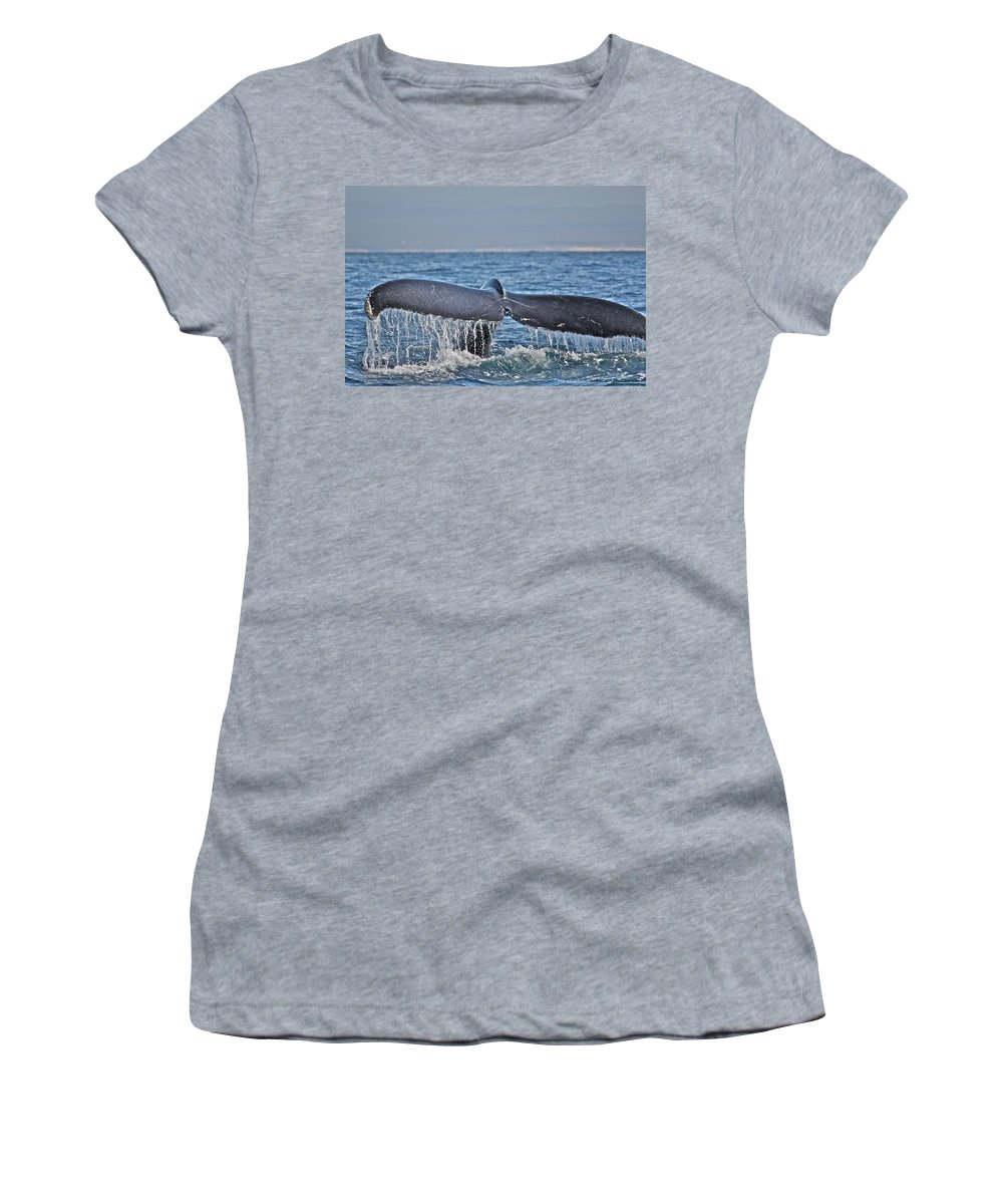 Whale Women's T-Shirt (Athletic Fit) featuring the photograph A Whale Of A Tale by Diana Hatcher