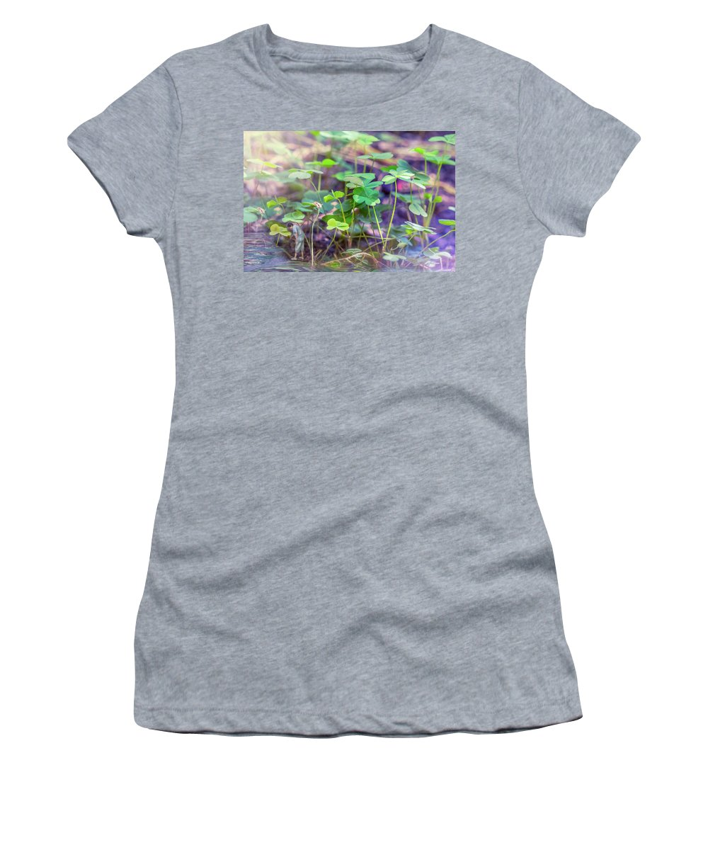 Leaves Women's T-Shirt featuring the photograph Alone by Louloua Asgaraly