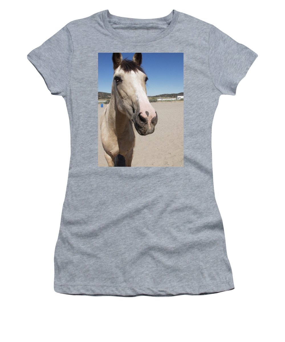 Horses Women's T-Shirt featuring the photograph Any Carrots by Jamey Balester