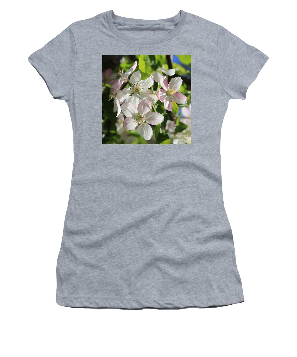 Apple Blossoms Women's T-Shirt featuring the photograph Apple Blossoms Square by Carol Groenen