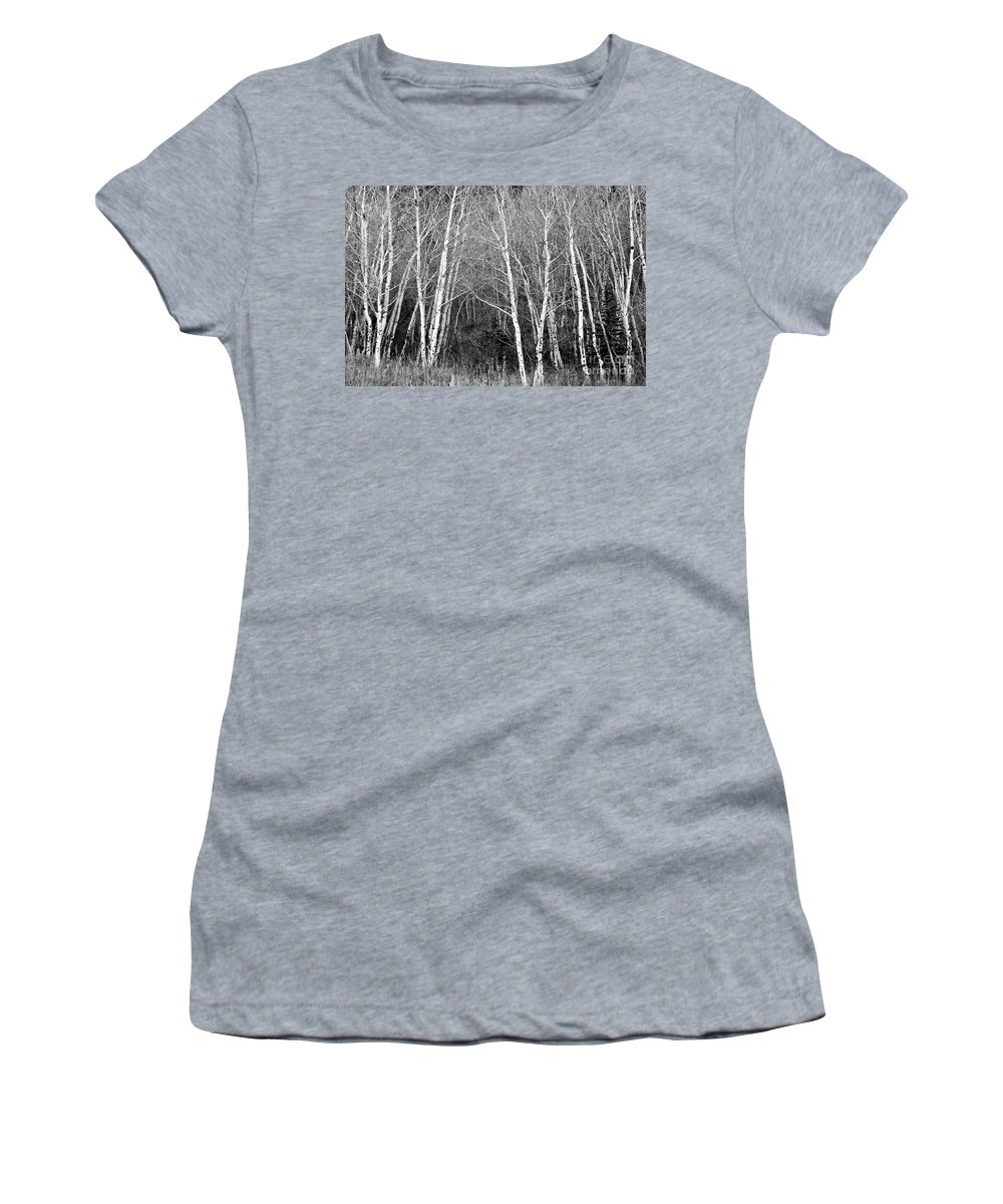 Aspen Women's T-Shirt (Athletic Fit) featuring the photograph Aspen Forest Black And White Print by James BO Insogna