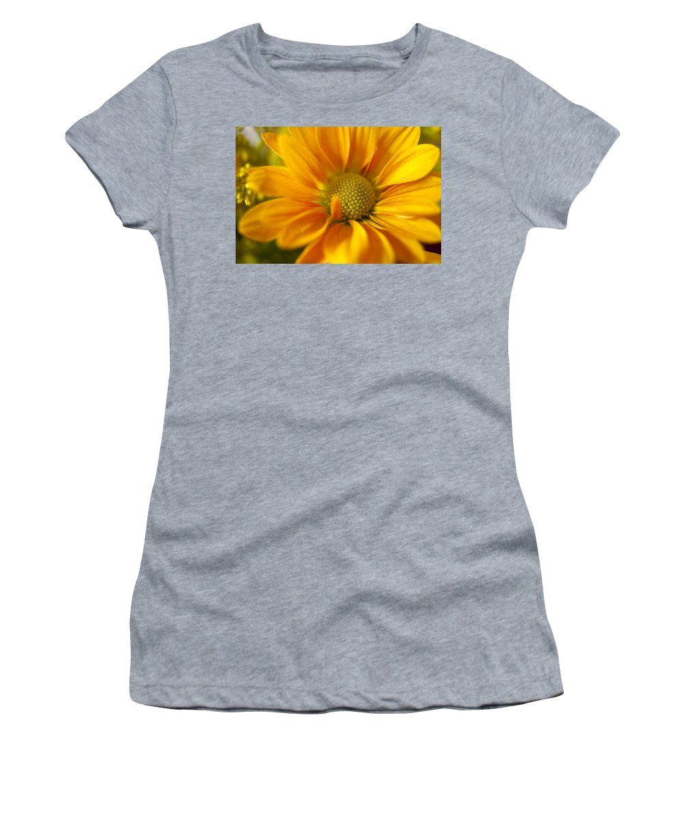 Flower Women's T-Shirt (Athletic Fit) featuring the photograph Aster Close Up by Andrew Soundarajan