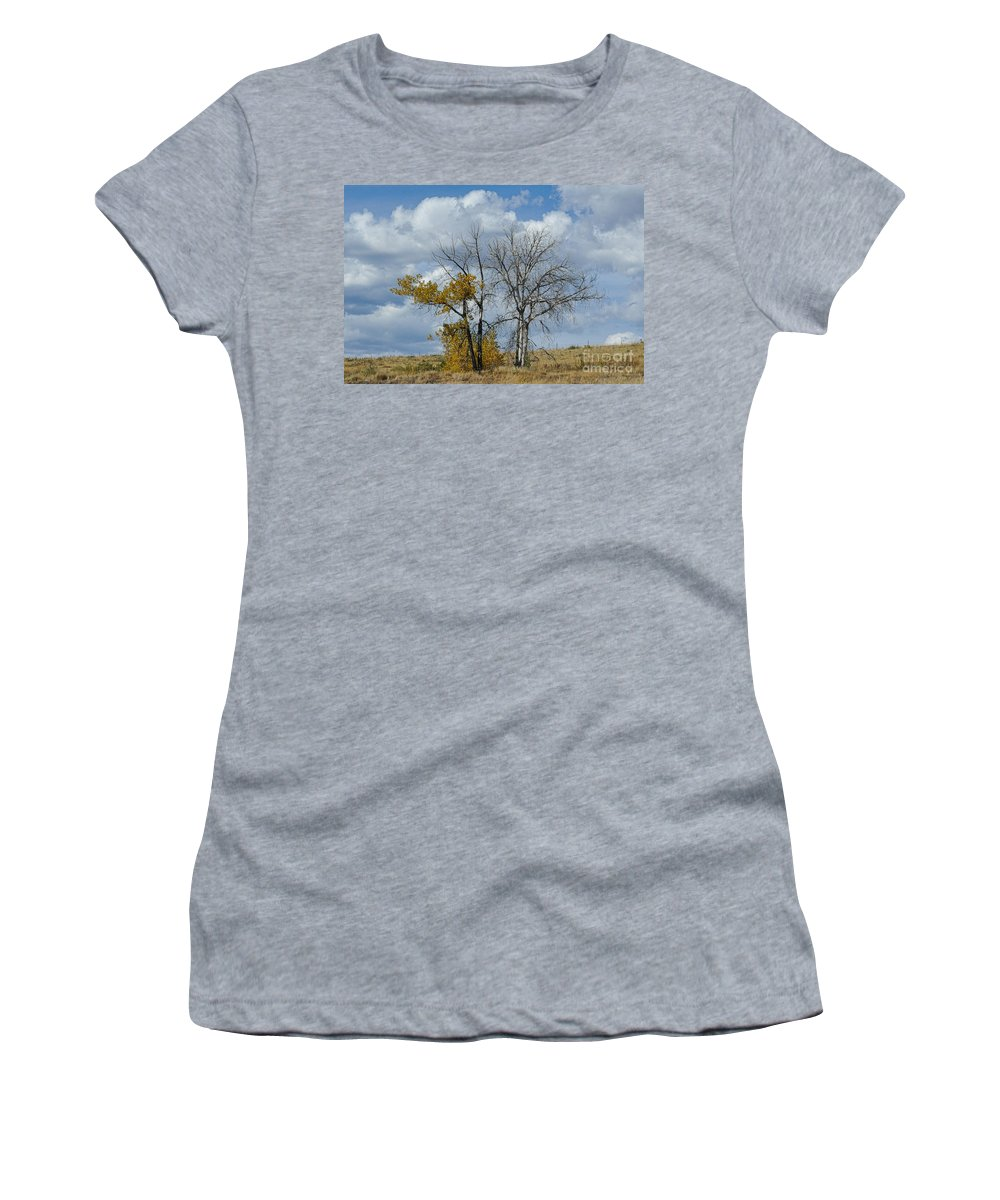 Trees Women's T-Shirt featuring the photograph Autumn Trees II by Merrimon Crawford