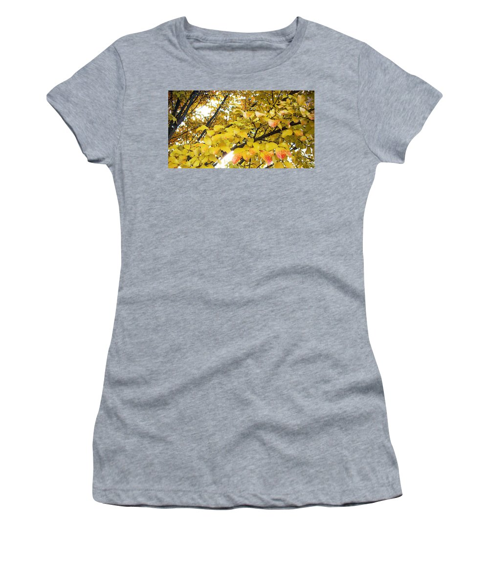 Fall Pictures Women's T-Shirt (Athletic Fit) featuring the photograph Autumns Gold by Karin Dawn Kelshall- Best