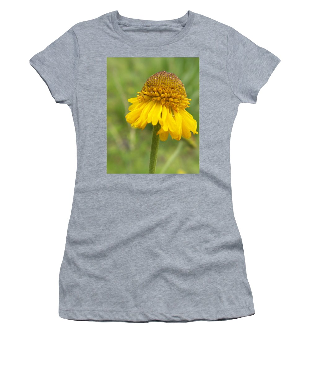 Flower Women's T-Shirt (Athletic Fit) featuring the photograph Bigelow by Amy Fose