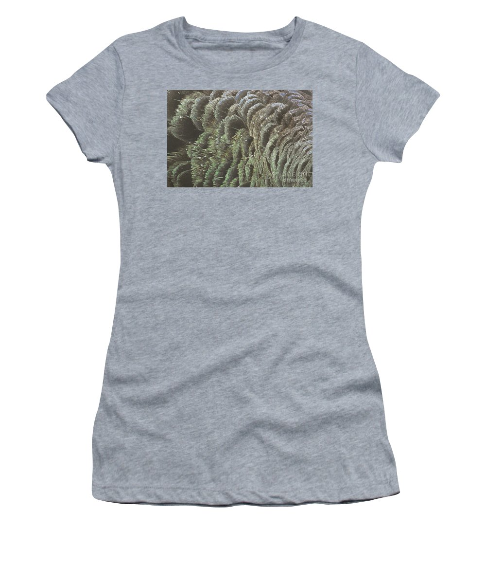 Swan Women's T-Shirt featuring the photograph Black Swan Feathers by Cassandra Buckley