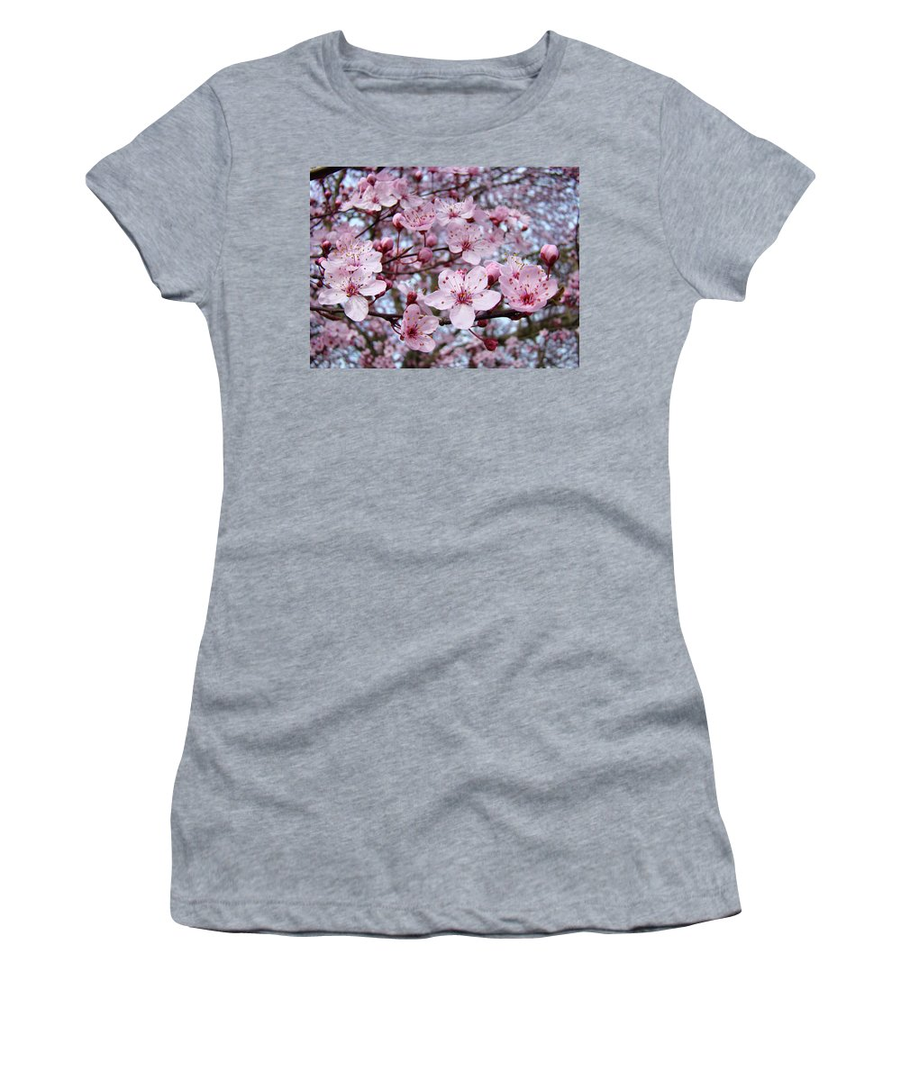 Blossom Women's T-Shirt featuring the photograph Blossoms Art Prints Nature Pink Tree Blossoms Baslee Troutman by Baslee Troutman