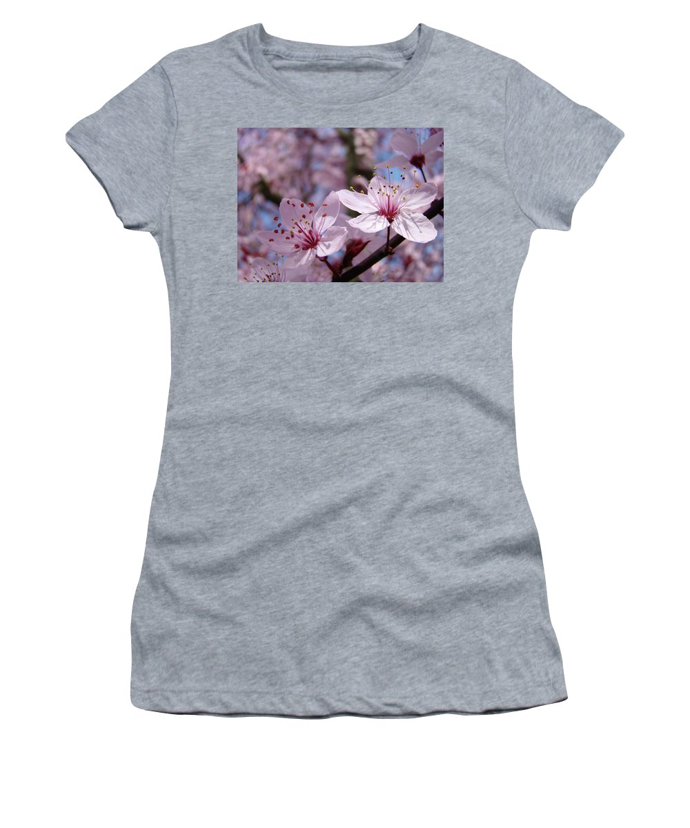 Blossom Women's T-Shirt featuring the photograph Blossoms Art Prints Pink Spring Tree Blossoms Canvas Baslee Troutman by Baslee Troutman