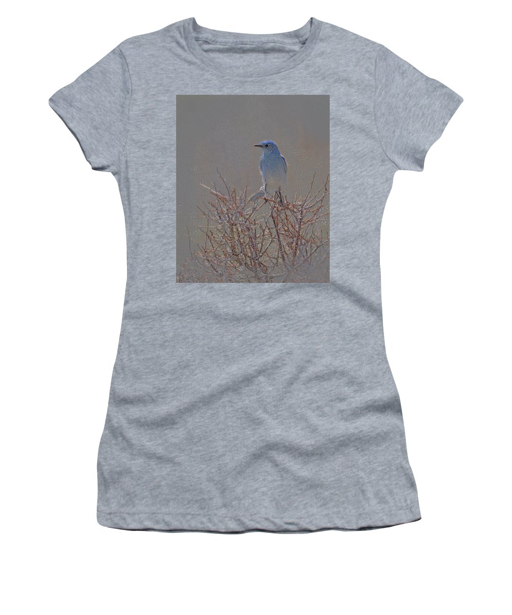 Colored Pencil Women's T-Shirt (Athletic Fit) featuring the photograph Blue Bird Colored Pencil by Heather Coen