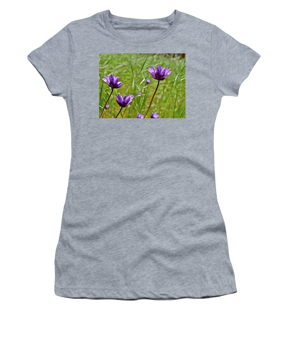 Flowers Women's T-Shirt (Athletic Fit) featuring the photograph Blue Dicks by Diana Hatcher