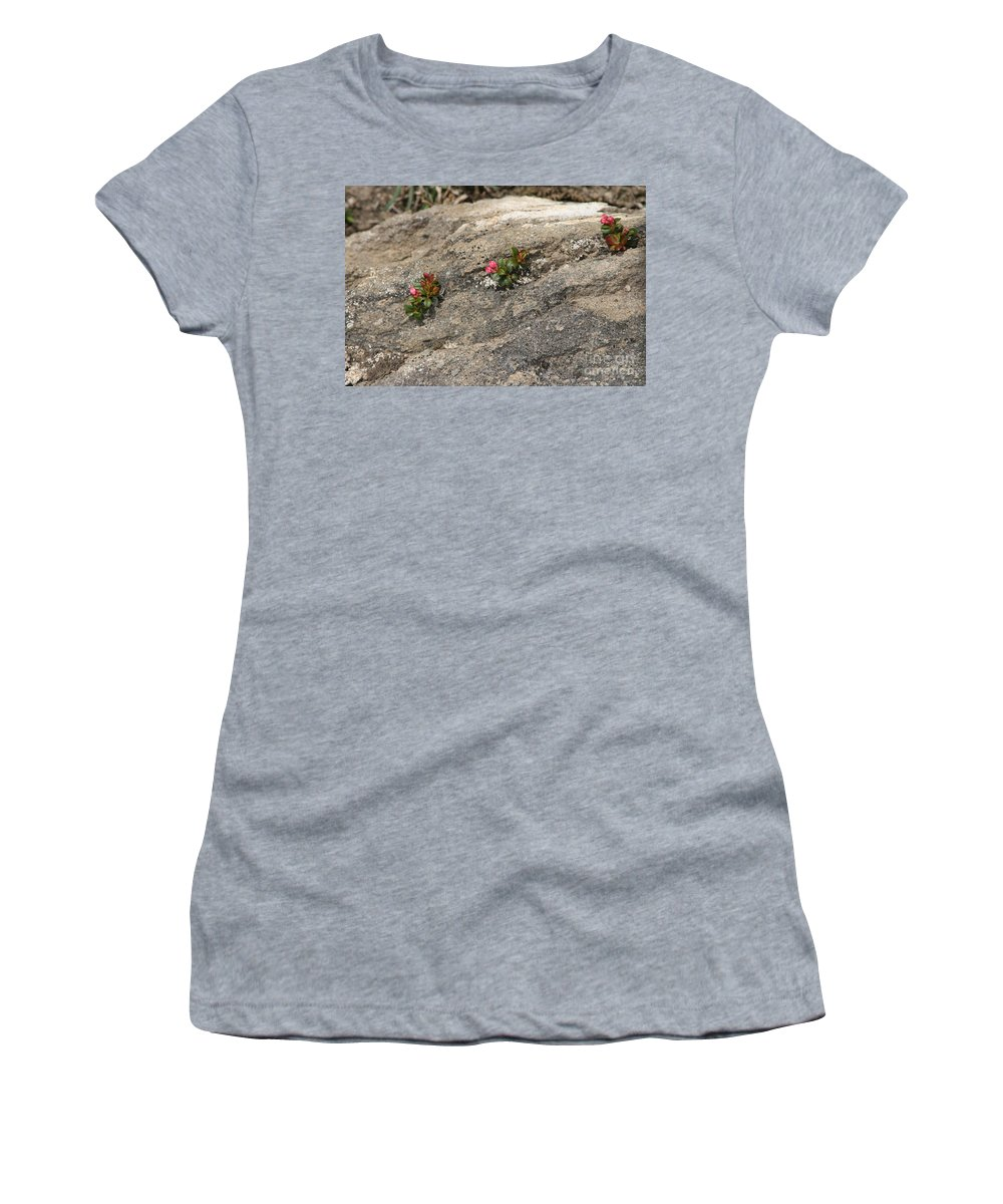 Nature Women's T-Shirt (Athletic Fit) featuring the photograph Buds Of Beauty Within Harshness by Mary Mikawoz