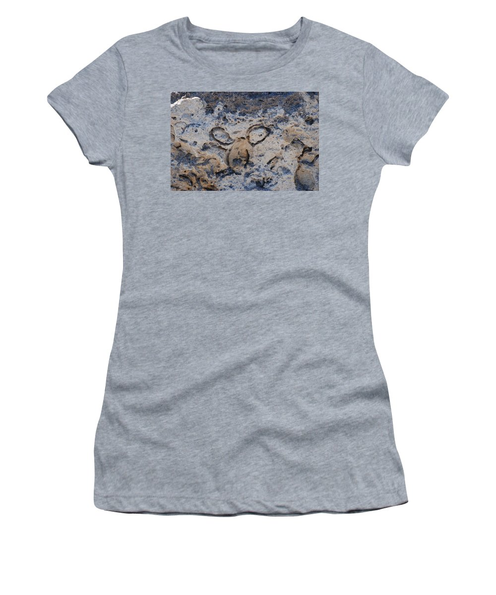 Ocean Women's T-Shirt featuring the photograph Carved Catface by Rob Hans