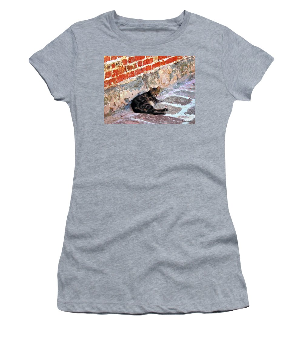 Cats Women's T-Shirt featuring the photograph Cat Against Stone by Susan Savad