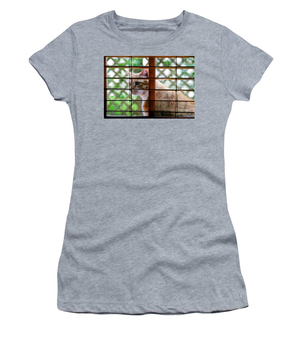 Feline Women's T-Shirt (Athletic Fit) featuring the painting Cat At The Window by David Lee Thompson