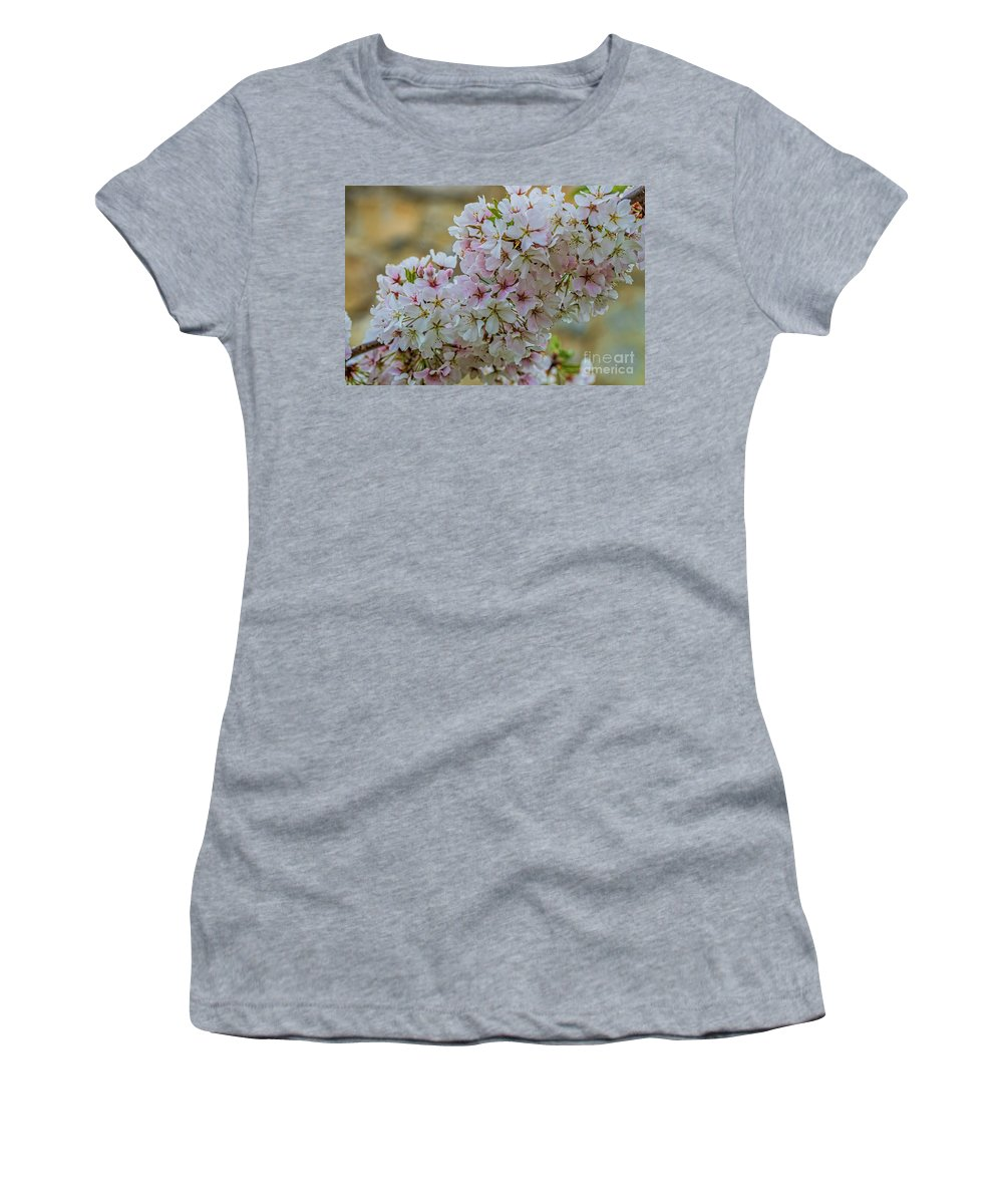 Cherry Blossoms Women's T-Shirt (Athletic Fit) featuring the photograph Cherry Blossoms Browns Island 7124t by Doug Berry