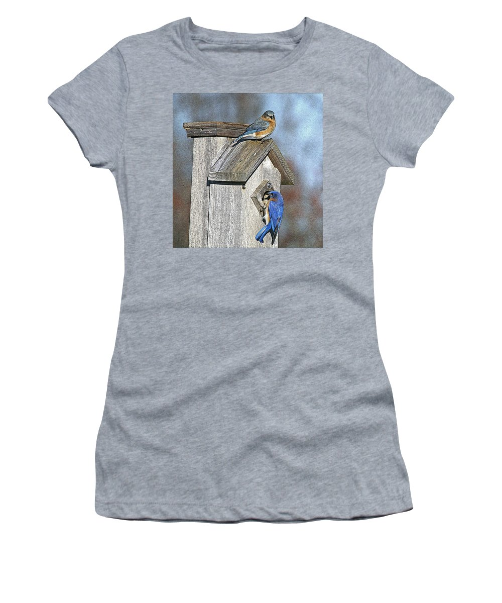 Nature Women's T-Shirt (Athletic Fit) featuring the photograph Cleaning House by Robert Pearson
