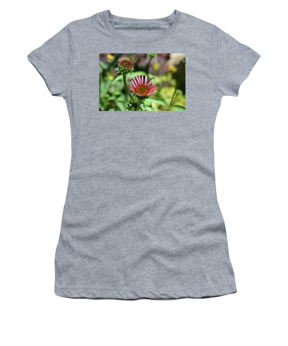 Photography Women's T-Shirt featuring the photograph Cones Are Coming by Barbara S Nickerson