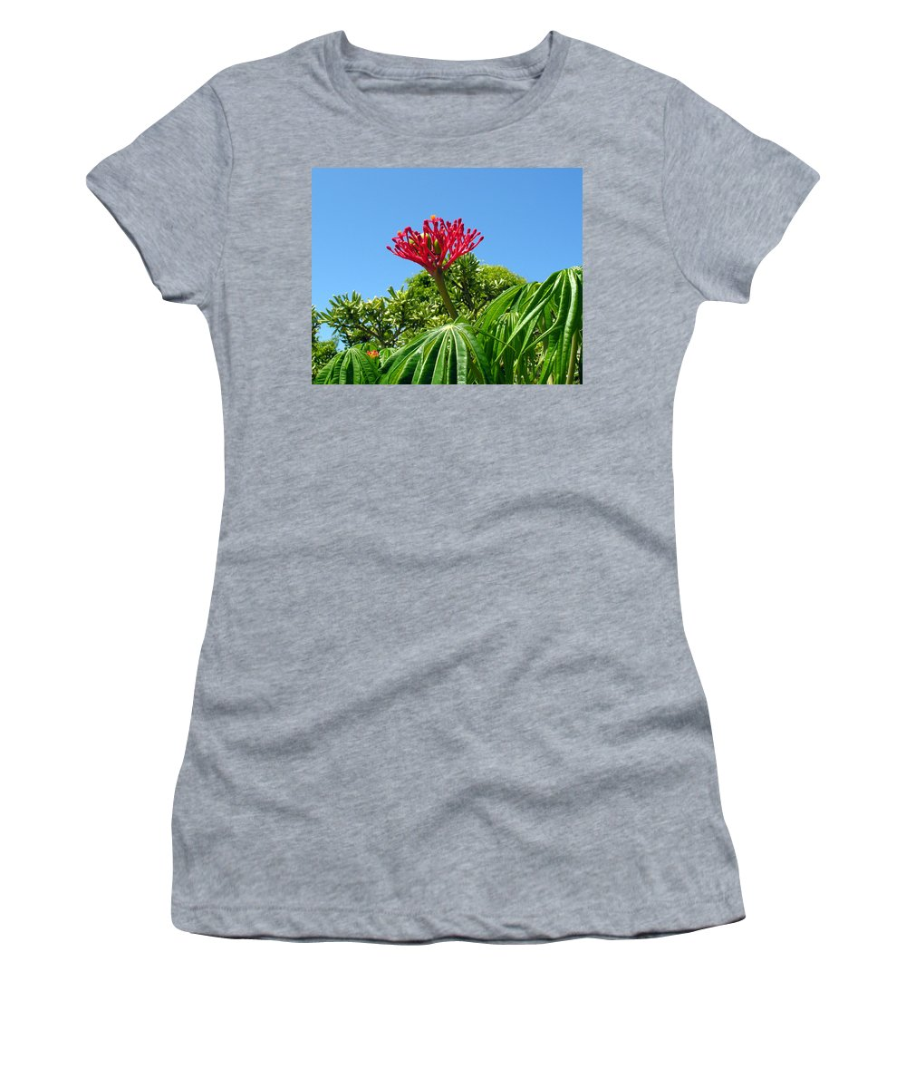 Coral; Bush; Coralbush; Weed; Flower; Leaf; Leaves; Fruit; Nut; Seed; Florida; Wild; Vacant; Lots; N Women's T-Shirt featuring the photograph Coral Bush With Flower And Fruit by Allan Hughes