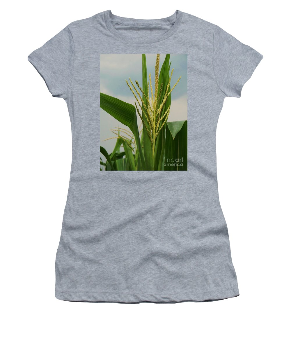 Corn Stalk Women's T-Shirt (Athletic Fit) featuring the photograph Corn Stalk by Eric Schiabor