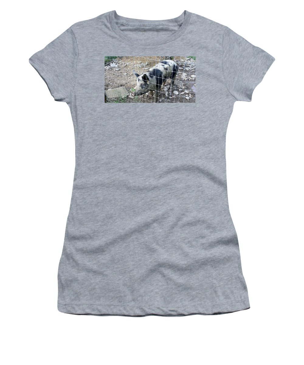 Cow Women's T-Shirt featuring the photograph Cowpig On The Farm by Rob Hans